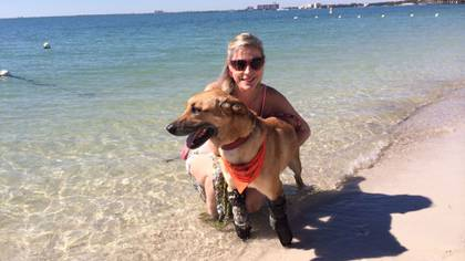 Gracias a sus prótesis y tratamiento piscológico, el can puede llevar una vida normal (Foto: cortesía Milagros Caninos)