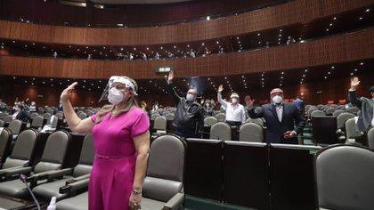 Los diputados tomarán todas las precauciones frente al coronavirus (Foto: Cuartoscuro)